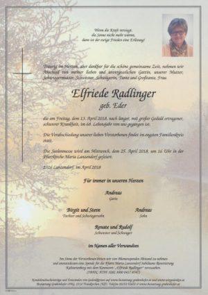 Portrait von RADLINGER Elfriede