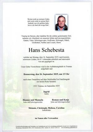 Portrait von SCHEBESTA Hans