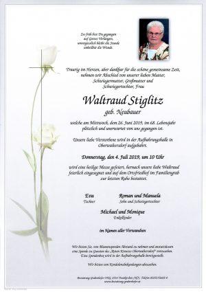 Portrait von STIGLITZ Waltraud
