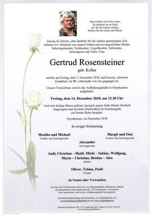 Portrait von ROSENSTEINER Gertrud