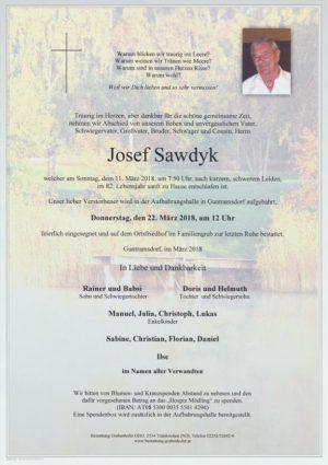 Portrait von SAWDYK Josef