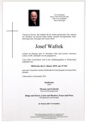 Portrait von WAFREK Josef